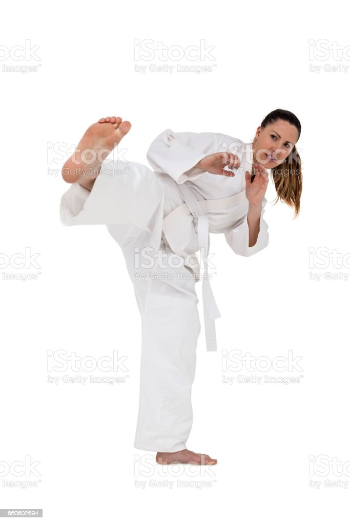 Fighter performing karate stance royalty-free stock photo