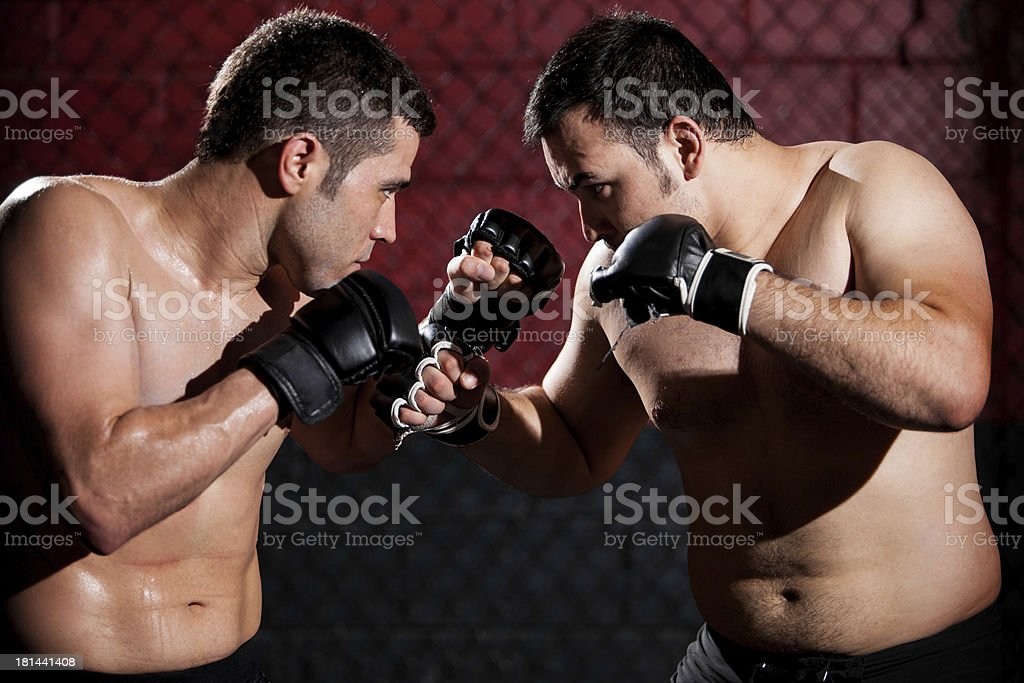 MMA Fighters during a fight royalty-free stock photo