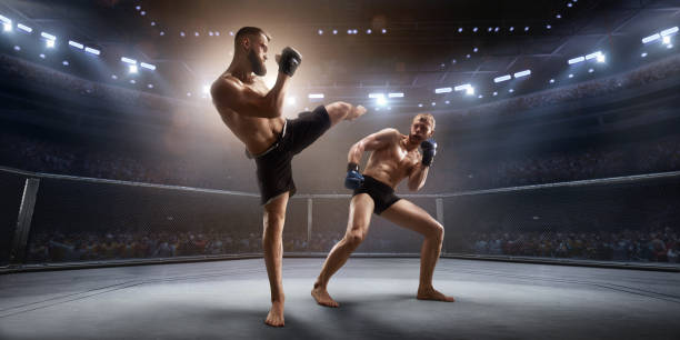 mma fighters in professional boxing ring - combat sport stock pictures, royalty-free photos & images