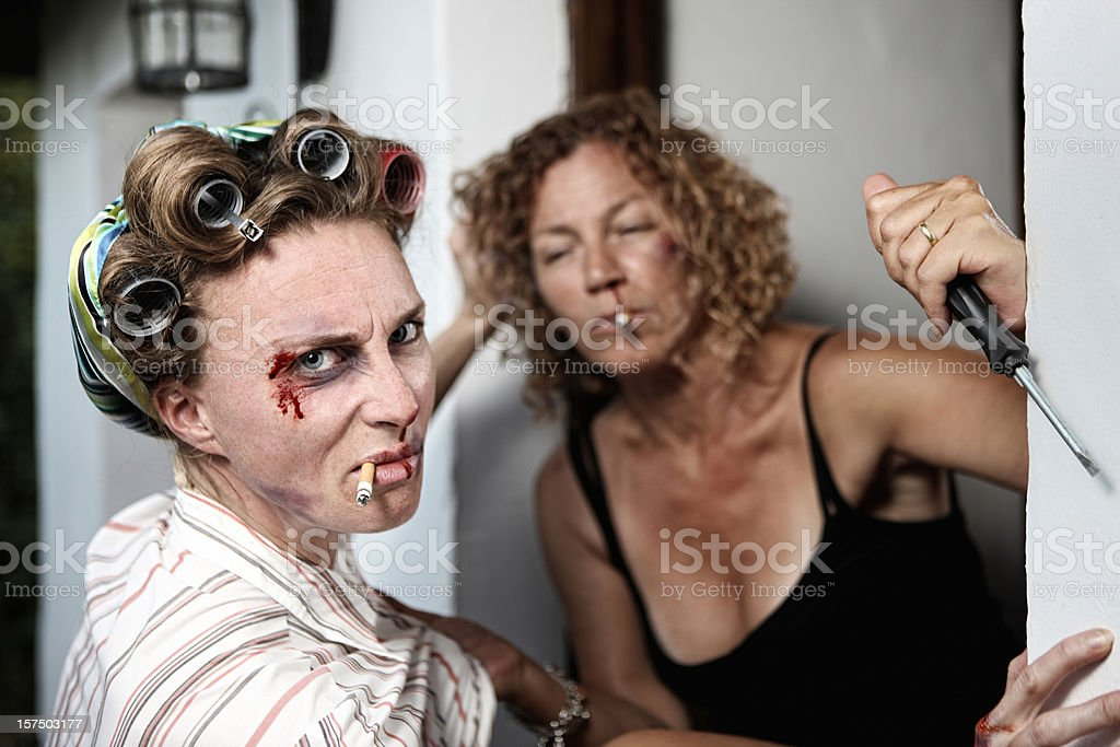 Fighting Housewives stock photo
