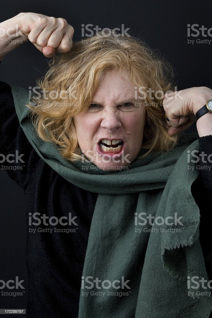 Fighting Mad! royalty-free stock photo
