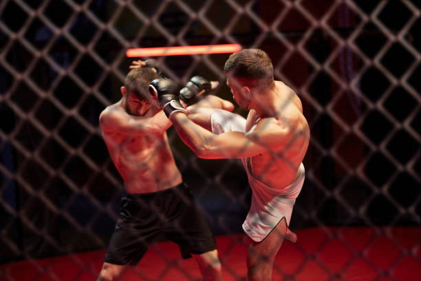 MMA fights in octagon. Training stock photo