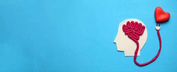 postać człowieka z mózgiem i czerwonym sercem. miłość i inteligencja - inteligencja zdjęcia i obrazy z banku zdjęć