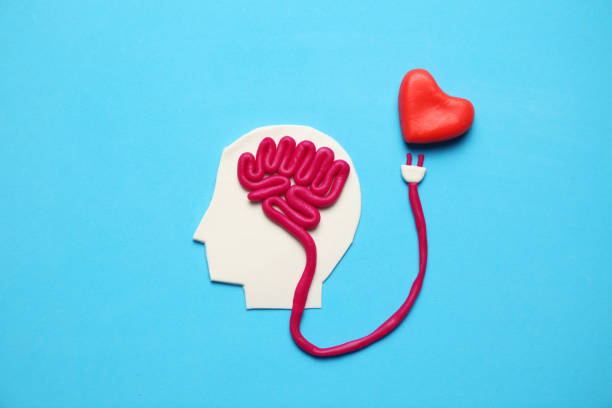 Figure of man with brain and red heart. Love and intelligence Figure of man with brain and red heart. Love and intelligence. mental wellbeing stock pictures, royalty-free photos & images