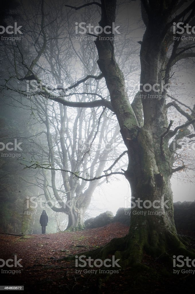 Figure walking by tree with another tree in the foreground stock photo