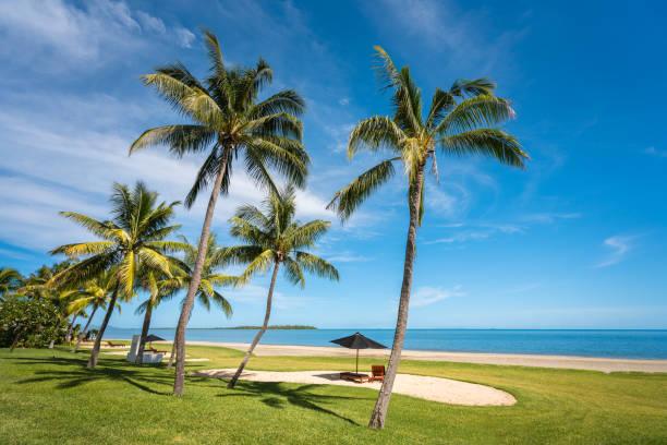 Fidschi-Küste – Foto
