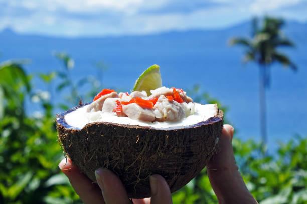 fijian food kokoda  against tropical island landscape - fiji stock photos and pictures