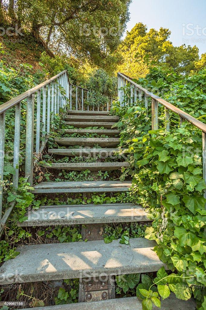 Filbert Street Stairs stock photo