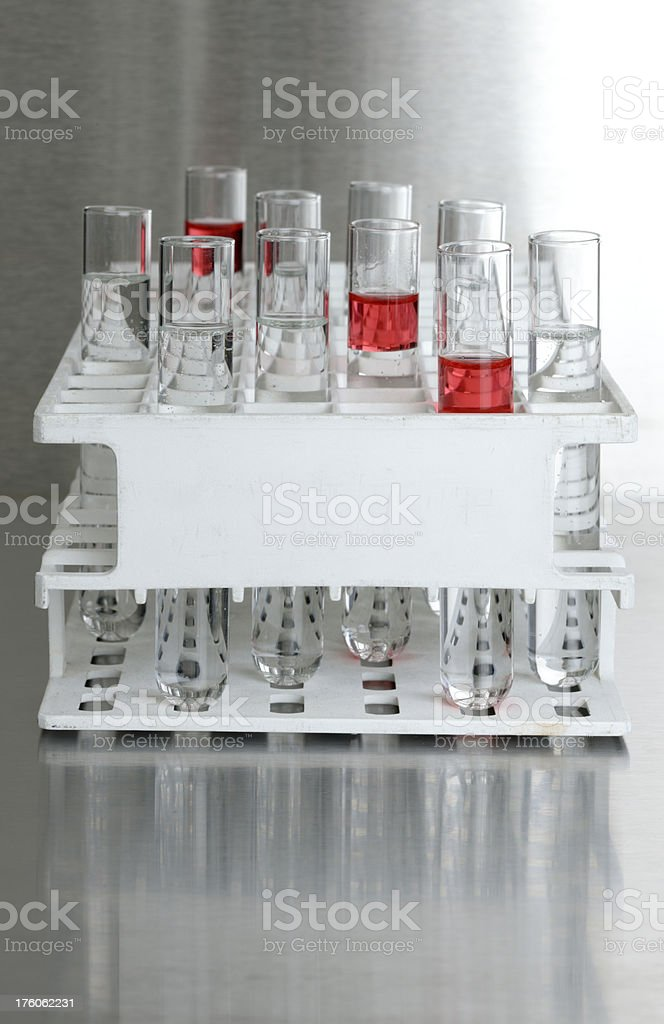 filled test tubes in rack XXXL stock photo