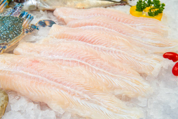 Fillet of Fish Pangasius on ice stock photo