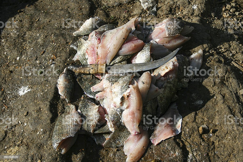 Filleted fish at the african market, Ethiopia stock photo