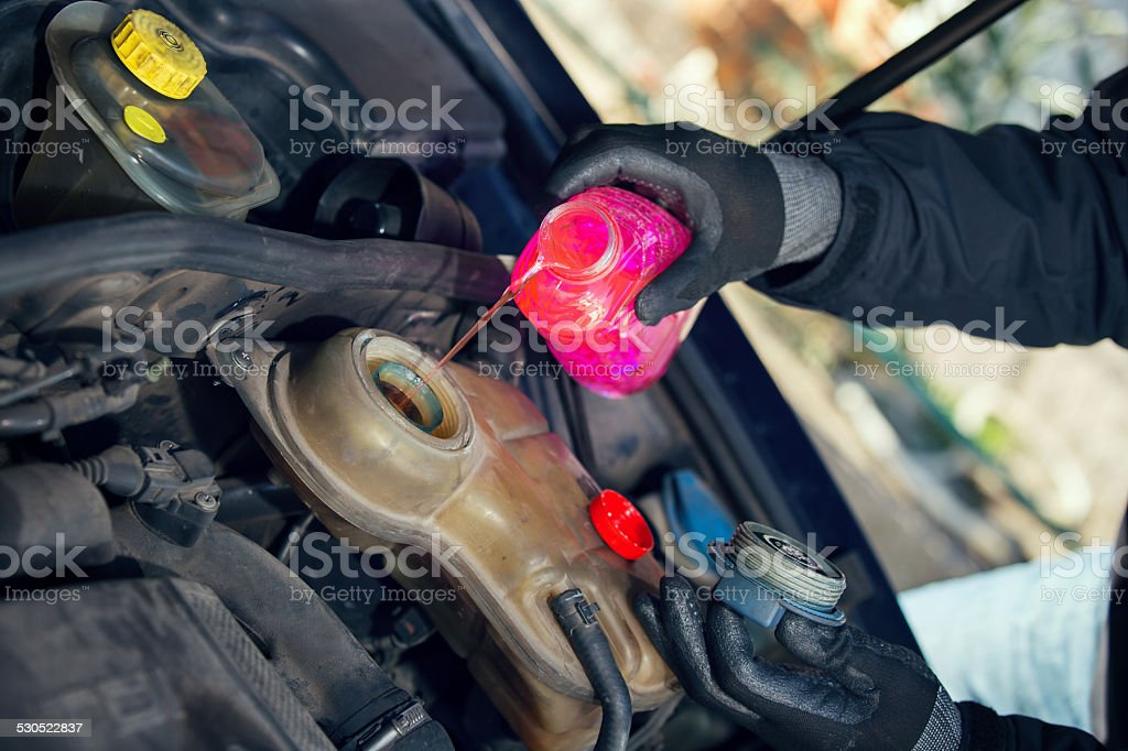 Filling Vehicle Radiator with Antifreeze stock photo