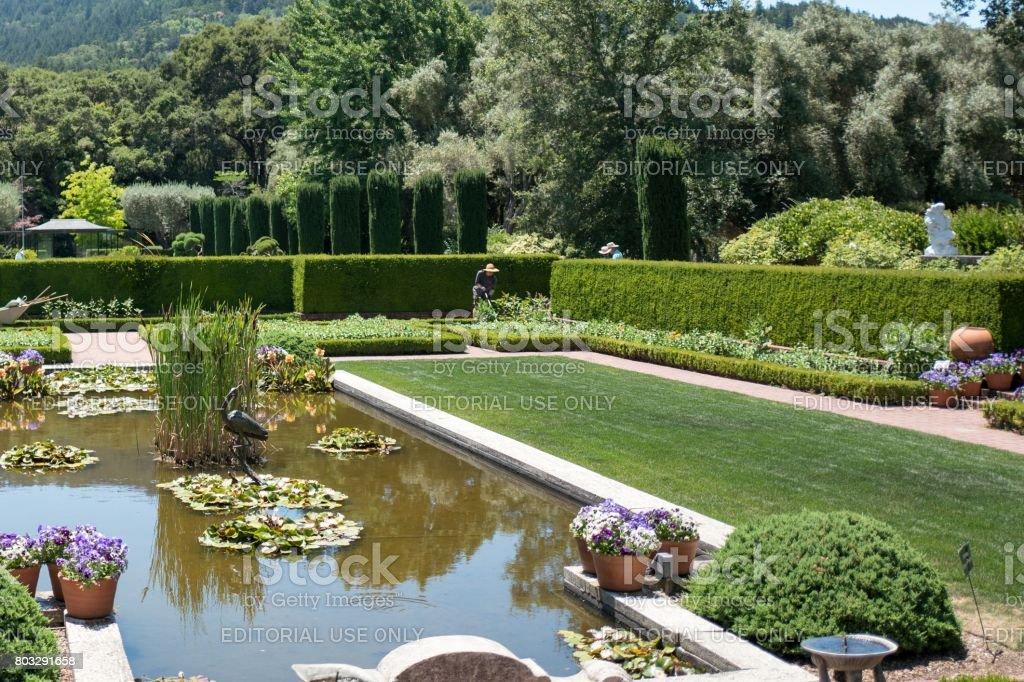 Filoli Stock Photo & More Pictures of Botanical Garden   iStock