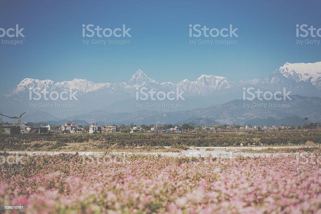 Filter beautiful Himalaya stock photo