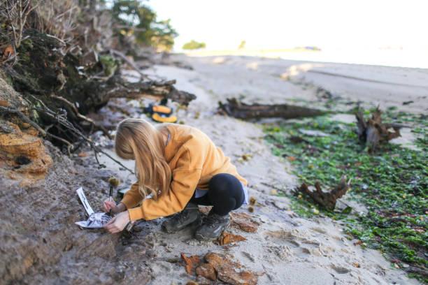 ostatni rok studentka geologii pobiera próbki skał przybrzeżnych i oznacza worki z próbkami na południu anglii - geologia zdjęcia i obrazy z banku zdjęć