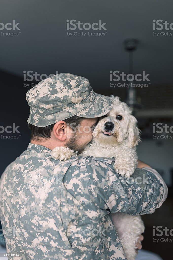 Finally home. Soldier hugging his dog. stock photo