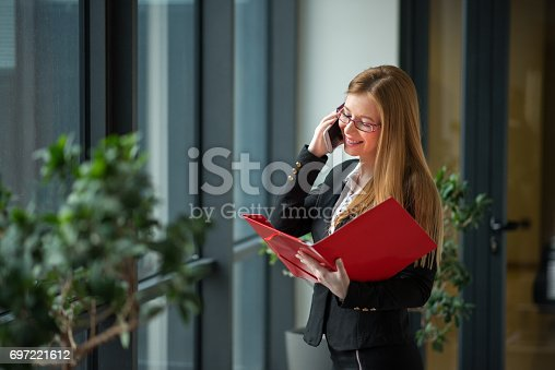 istock Financial advisor talking with a client on phone 697221612