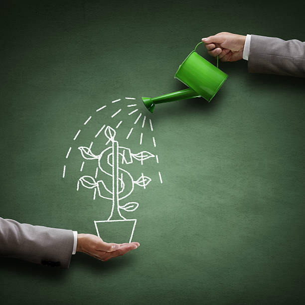 Financial growth Watering can and money tree drawn on a blackboard concept for business investment, savings and making money money tree stock pictures, royalty-free photos & images