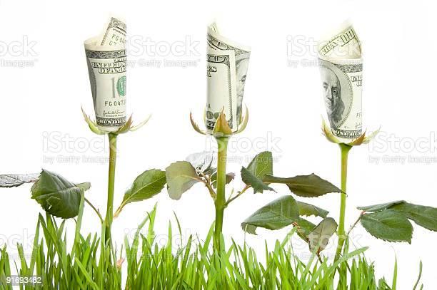 Financial growth picture id91693482?b=1&k=6&m=91693482&s=612x612&h=zkpc8biiopb7sleyf6gk2lvrfzletjvejsruofkp2bw=