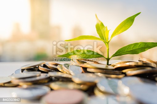istock Financial Growth, Plant on pile coins with cityscape background 840202842