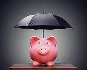 『ファイナンシャルインシュランスまたは保護ピギー銀行、傘