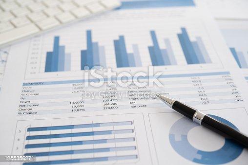 849046006 istock photo financial report 1255356271