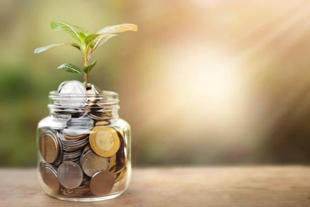 Sparkonzept - Pflanze wächst aus Münzen – Foto