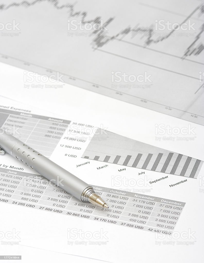 Financial Statements royalty-free stock photo