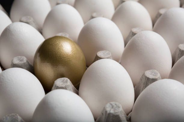 Financial Success finding the Golden Egg and standing out from the crowd closeup stock photo