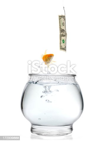 Goldfish jumping for a hooked one dollar bill.  Please see my portfolio for other concept images.