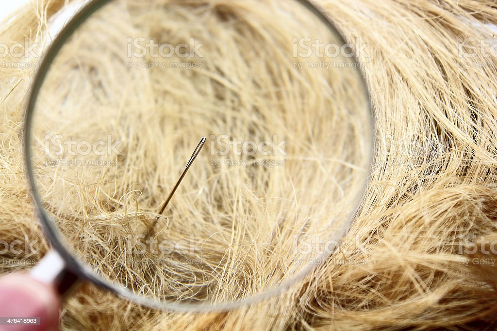 Find a Needle in the haystack royalty-free stock photo