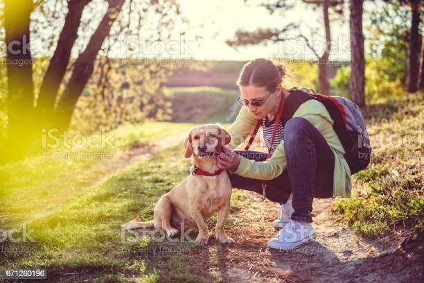 Find a tick on a dog picture id671260196?b=1&k=6&m=671260196&s=612x612&h=uxokv1dfjdzqg1  ldu uj40099d6jdpjbzht2vuvlc=