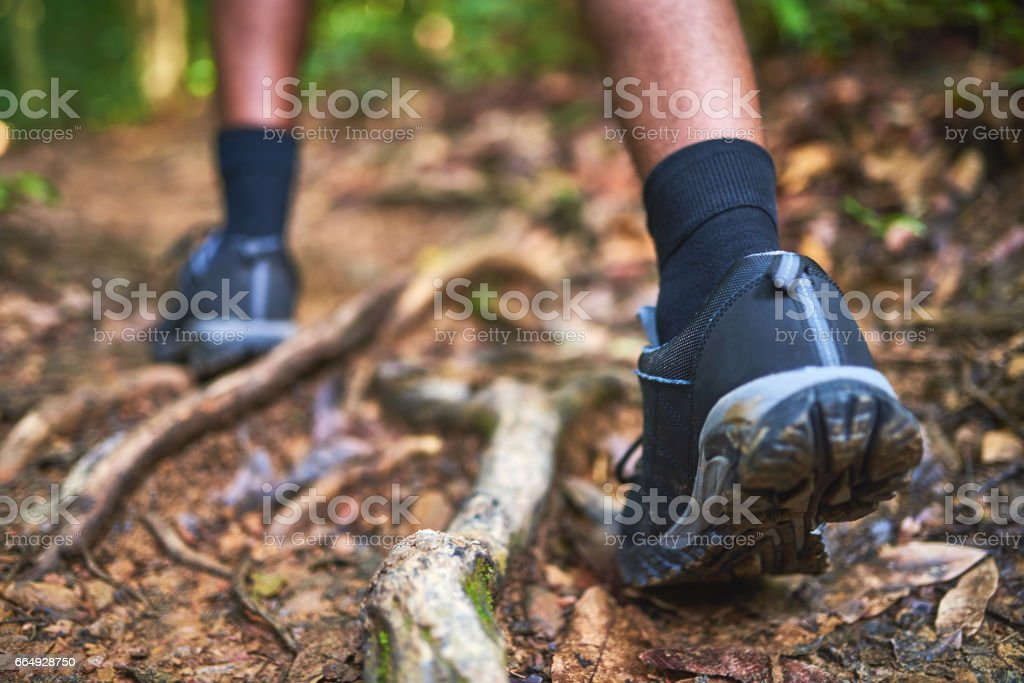 Find new paths to explore stock photo