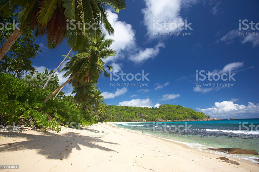 find your place in paradise royalty-free stock photo