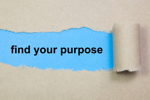 find your purpose text on paper. Word find your purpose on torn paper. Concept Image. stock photo
