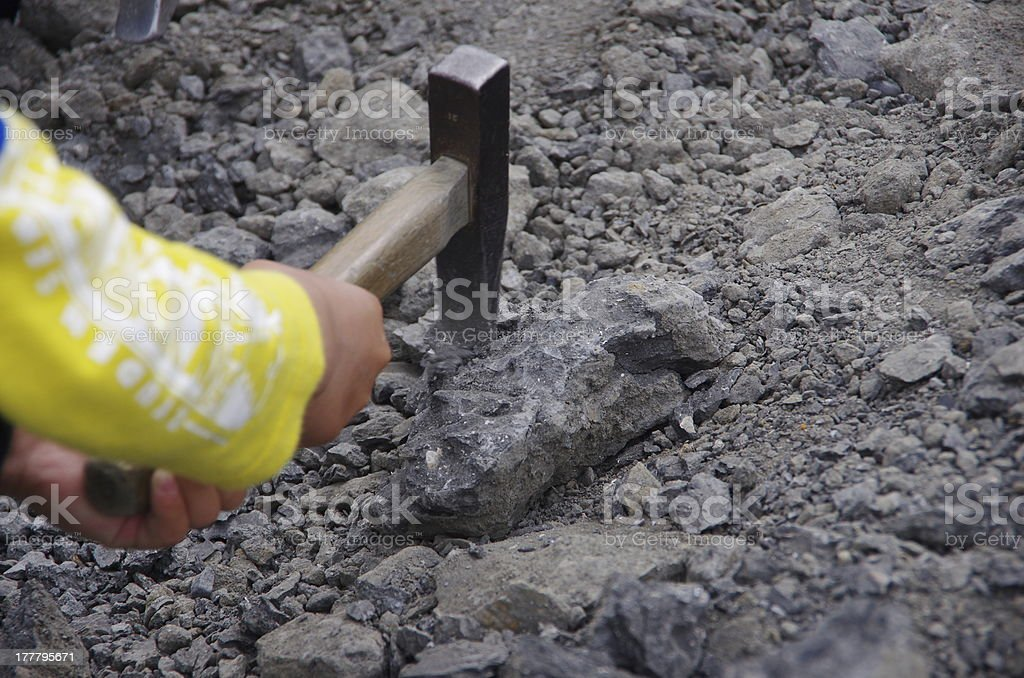finding fossils stock photo