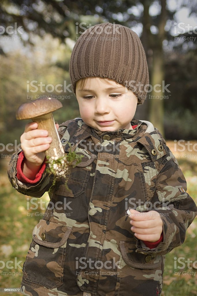 Finding Mushrooms royalty-free stock photo