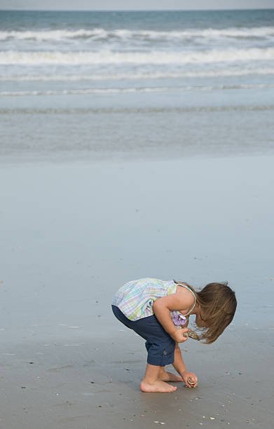 finding shells - little girl picking up sea shells at the beach stock pictures, royalty-free photos & images