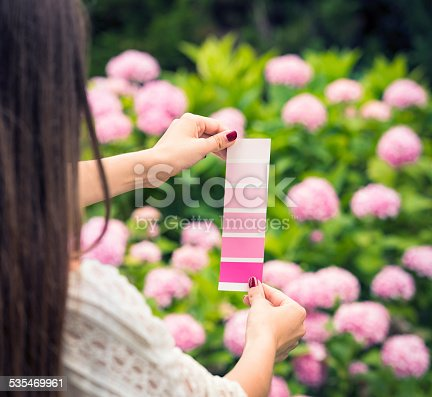 A woman looking for a match between a paint colour swatch chart, and pink rhododendron flowers.
