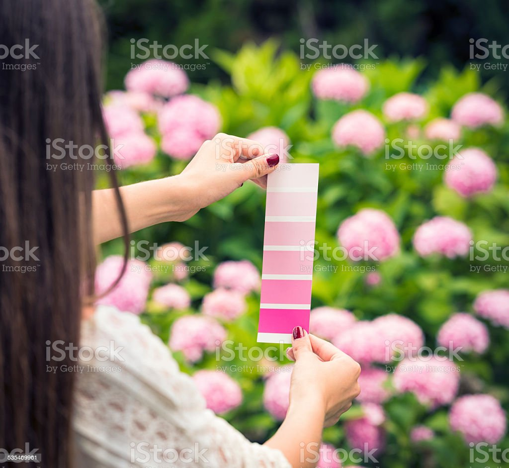 Finding That Colour - Nature's Inspiration stock photo