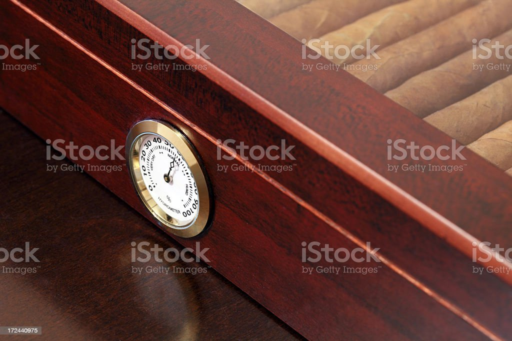 Fine Cuban cigars in a wooden humidor royalty-free stock photo