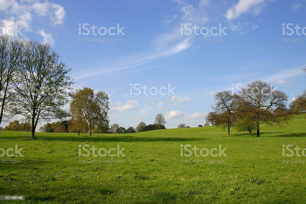 fine spring day at the meadows royalty-free stock photo