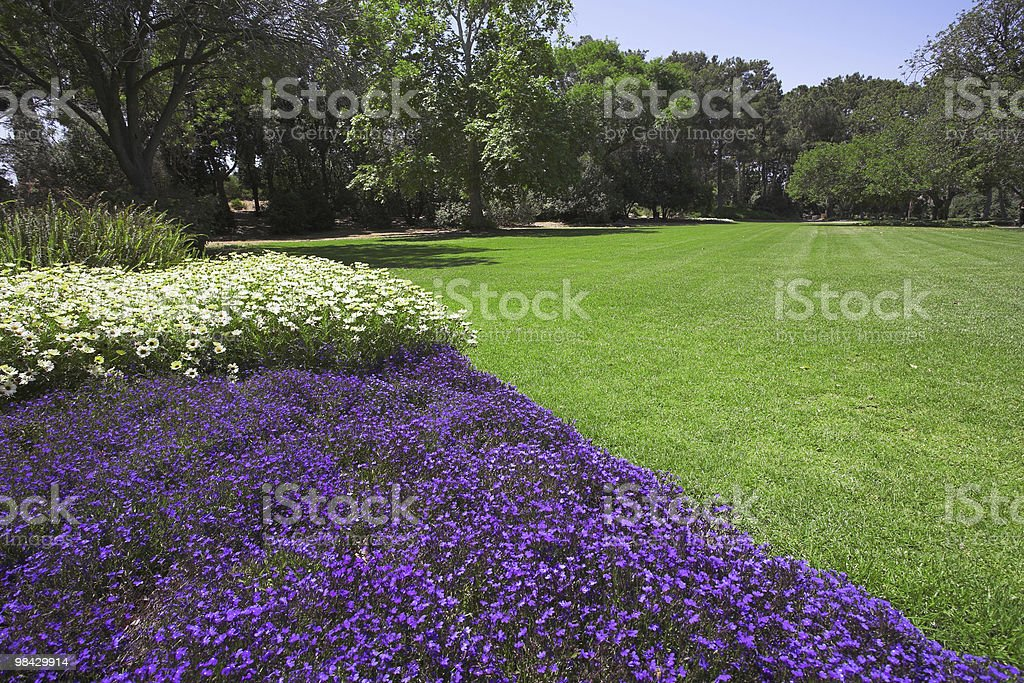 Fine spring day royalty-free stock photo