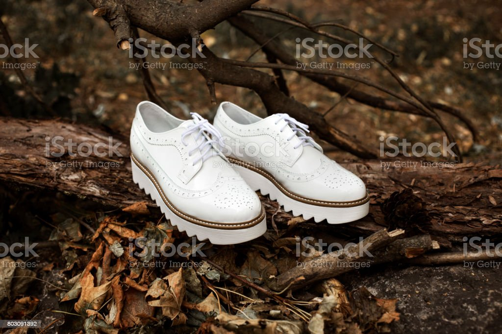 Fine trendy white leather women's brogues shoes on the old wood and autumn leaves in a forest or park. Fashion vintage advertising shoes photos. stock photo