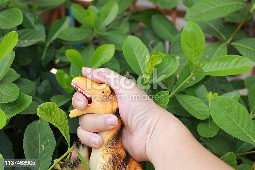 istock Finger bite by dinosaurs 1137463905