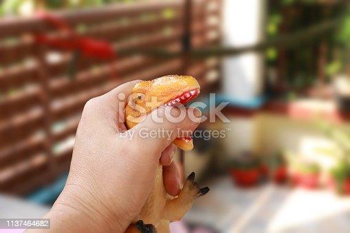 istock Finger bite by dinosaurs 1137464682