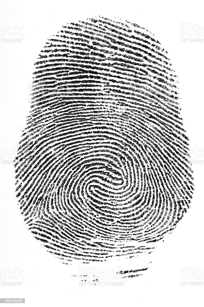 Finger print double loop whorl stock photo