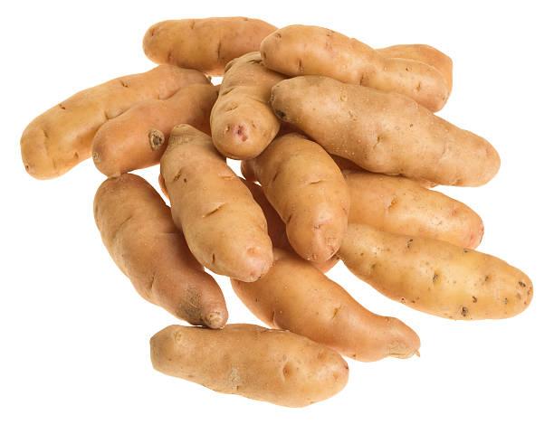 Fingerling potatoes isolated on white stock photo