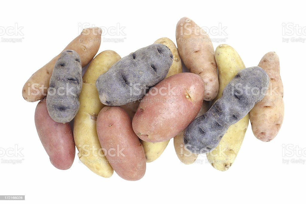 fingerling potatoes stock photo