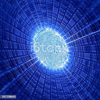 671053272 istock photo fingerprint and binary code 537208643